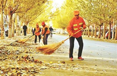 北京环卫集团:落叶不清扫将造成空气污染